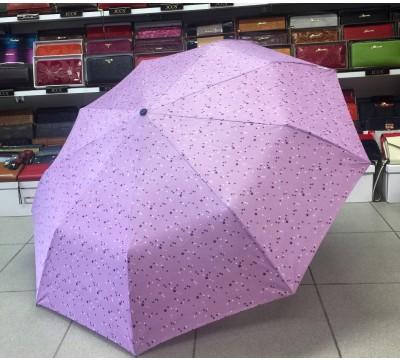 Moteriškas automatinis skėtis Nr. AC